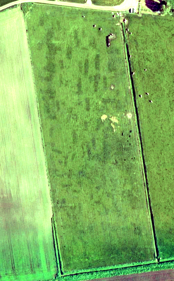 Retting pits east of Haxey the dark rectangles / crop marks are the outlines of old pits